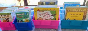 Childrens books in colored coded tubs for Shungopavi Village Library